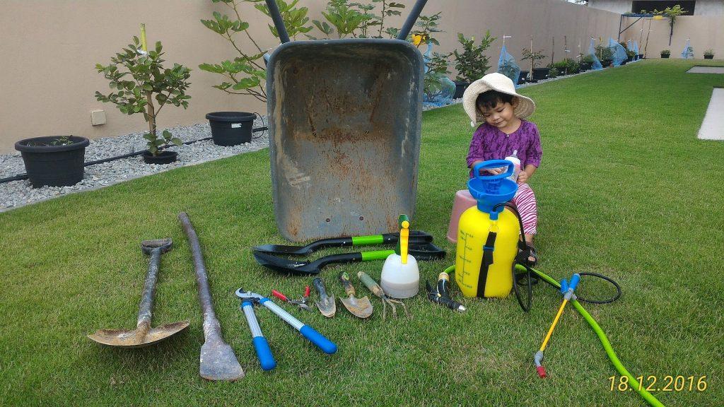 Peralatan asas untuk Mini Kebun