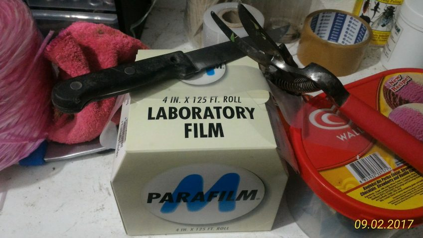 Plastik Ais Krim 1Malaysia, Laboratory Parafilm, Pisau dan gunting. Peralatan Cantuman Baji.